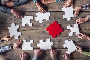 tegen expertise partners